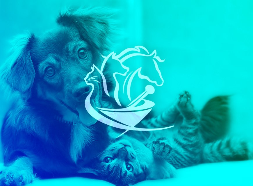 logotipo manipulação veterinária